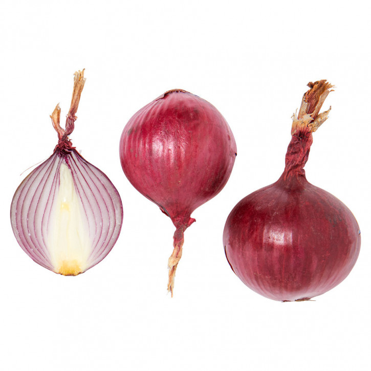 Zwiebeln Rot im Netz 1Kg